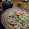 遊歩庵 - 料理写真:おろしそば(大)