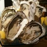 フィッシュマンズ マルヤマ - 料理写真:この牡蠣たちにも罪は無い
