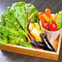 新鮮野菜使用のヘルシー料理は絶品。女子会にも大人気!
