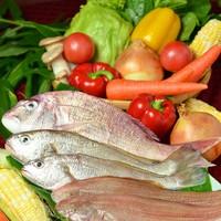 新鮮な旬の野菜・鮮魚