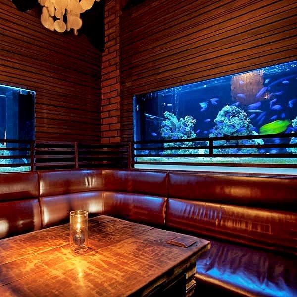 https://tabelog.ssl.k-img.com/restaurant/images/Rvw/53393/53393092.jpg