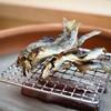 松川 - 料理写真:美山産鮎