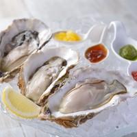 ☆宮城の牡蠣(Sanriku Oyster)☆