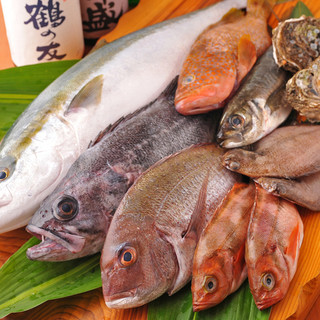 佐渡沖で獲れた地魚が毎日直送されてきます!