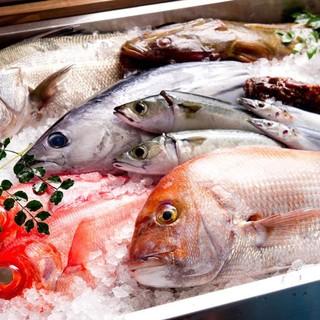 宮城の漁師から直送される日替わりの新鮮魚介!