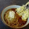 文殊 - 料理写真:茄子天がはみ出る大きさ