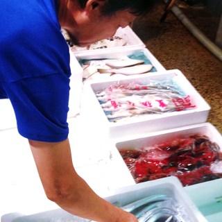 魚屋が目指す地産地消。愛知県産食材や三河湾獲れネタにこだわり