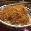 藤岡拓心庵 - 料理写真:160811 ソースヒレカツ丼