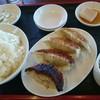 Nankintei - 料理写真:餃子定食