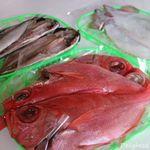 漁場屋 - 料理写真:アジ、イカ、キンメダイ 16.8月