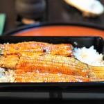 秋本 - 料理写真:共水うなぎ うな重