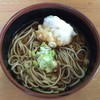 味処 太一 - 料理写真:おろし蕎麦、700円です。