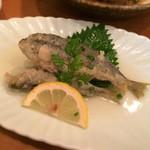博多馳走酒肆 大関 - 小鯵ちゃん!!