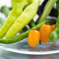 生産者直送!大自然が育てたお野菜をお届け!