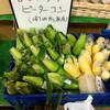 道の駅木曽福島 - 料理写真:開田高原産のとうもろこし(2016.09現在)