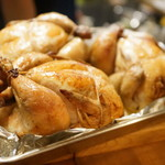 piccolo MODENA - 丸鶏パラダイス