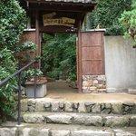 京 上賀茂 御料理秋山 - お店の入口です。 趣がありますよね~。 綺麗に掃き清められています。 ちょっとした隠れ家に来た感じです。 門の後ろの緑が眩いです。