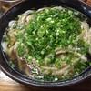 薬師 うどん店 - 料理写真:ごぼう天うどん=430円