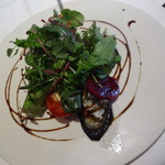 Izai - ランチ 前菜 秋刀魚の炙りパトー仕立て トマトと茄子のコンフィ