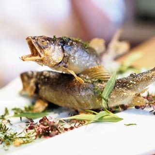 まめたん - 料理写真:琵琶湖半天然鮎の塩焼き あっぷ