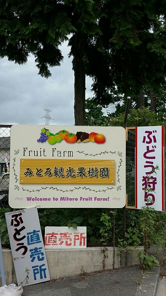 みとろ観光果樹園