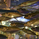 魚盛 - まばたきしない活鯵、かわくぃくってオーダーできず・・・銀座在住鯵・