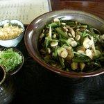 滝野庵 - 山菜そば