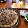 そば工房 宝山 - 料理写真:天ぷら田舎蕎麦