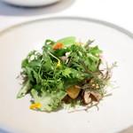 カセント - 季節の野菜のサラダ エメンタルチーズのソース