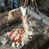 やまめ庵 - 料理写真:到着に合わせて焼き上げた鮎