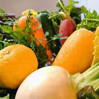 《産地直送》旬の野菜を贅沢に使用!