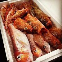 地魚オンリーの魚介メニュー