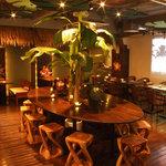 ププケア - 店内はウッディーで落ち着いた雰囲気。大きなバナナの木がお出迎え☆
