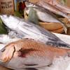 合点 - 料理写真:鮮魚