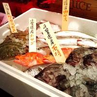 ◆◆本日の鮮魚!!◆◆