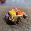 フロリレージュ - 料理写真:香り/花とチーズ