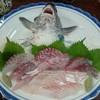 鯉登 - 料理写真:スズキのお造り