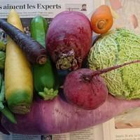 こだわりの季節の温野菜。北海道真狩村から♪