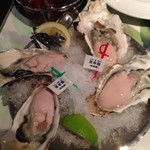 Oyster Bar ジャックポット - 生牡蠣