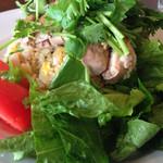 タイガー餃子会館 - サラダのドレッシングがチャーハンに染みちゃってイマイチ