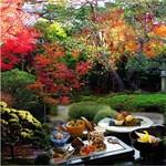 桜鶴苑 - 色鮮やかに染まった紅葉を眺めながらお食事して頂けます