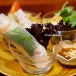 ニャーヴェトナム - 小海老と豚肉の生春巻