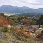 檪の丘 - テラス席からの景色