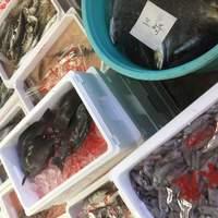 ■三崎港直送の新鮮な魚介類■