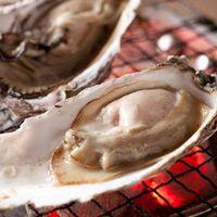 ●炭リッチの牡蠣●牡蠣小屋よりとれたてで新鮮な牡蠣を直送♪