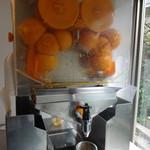 ややダイニング - フレッシュオレンジジュースマシーン