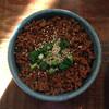 分田上 - 料理写真:ラーユご飯200円