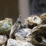 かき小屋フィーバー@BLUE JAWS 名古屋烏森店 - 牡蠣のガンガン鉄板焼き