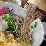 蕎麦切 左膳 - 料理写真:冷やしたぬきそば800円+大盛り300円