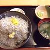 マイアミ貝新 - 料理写真:シラス丼